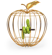 Apple-ization and security threats
