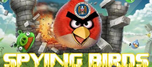 spyingbirds