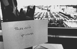 password princess