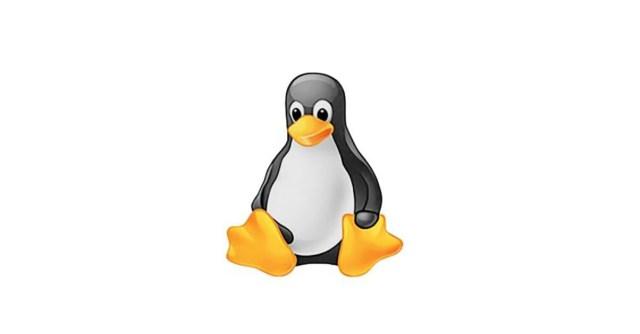 faille de securite linux